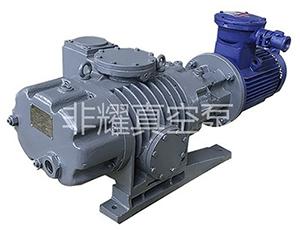 罗茨真空泵 罗茨水环泵 罗茨液环泵 非耀罗茨真空泵