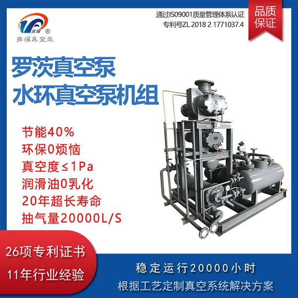 罗茨泵水环真空泵机组