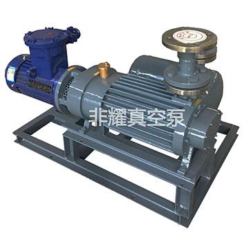 螺杆真空泵 螺杆式真空泵 无油无水螺杆真空泵 节能环保螺杆真空泵