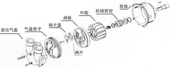 水环真空泵结构图 水环真空泵组成图 水环真空泵部件图