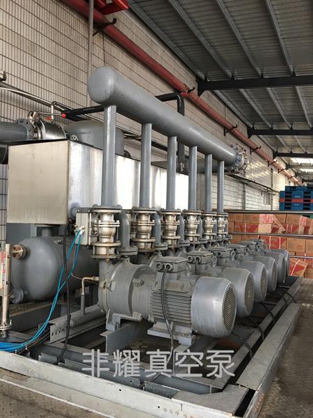 水环式真空泵 水环泵 非耀水环式真空泵机组 水环式真空泵机组