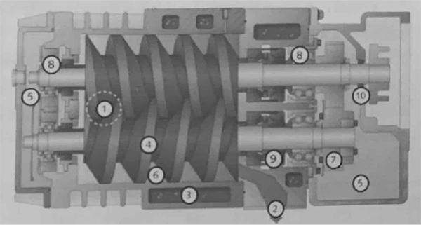 螺杆真空泵结构图