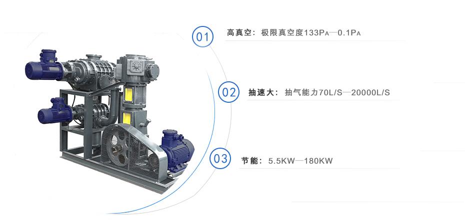 罗茨泵+无油往复真空泵机组