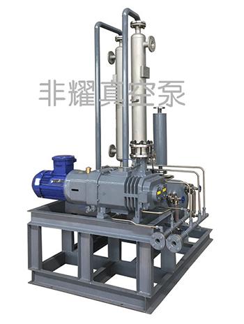 螺杆真空泵机组 螺杆式真空泵机组 螺杆真空泵机组生产厂家 非耀螺杆真空泵机组生产厂家
