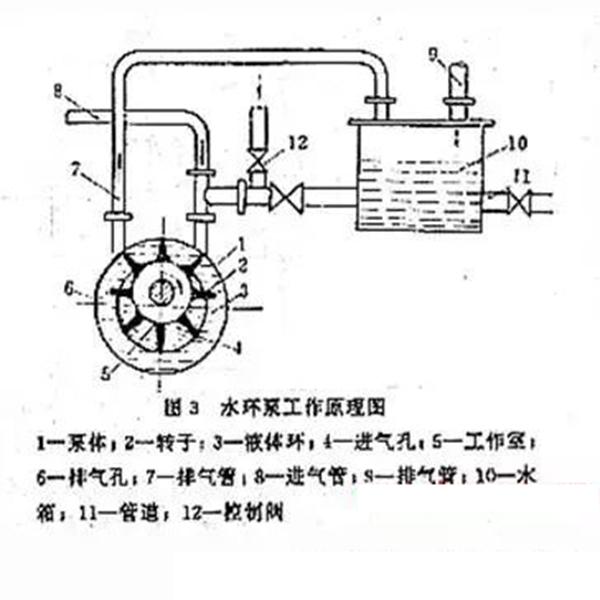 水环真空泵结构