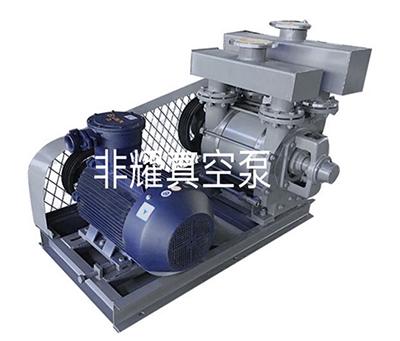 水环真空泵 水环式真空泵 液环真空泵 水环真空泵厂家2BE系列水环真空泵