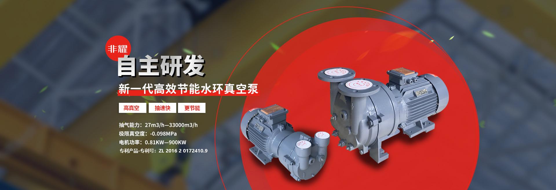 自主研发新一代高效节能水环真空泵