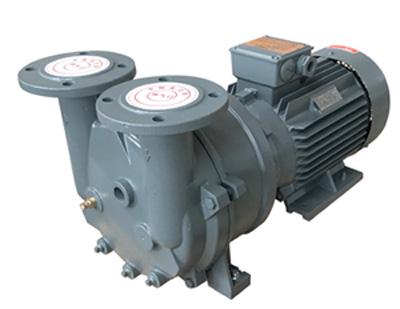2BV5水环式真空泵