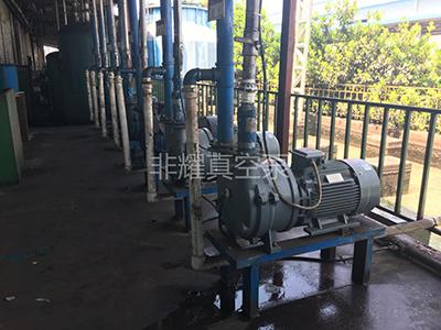 水环真空泵 2BV5161水环真空泵用在磁铁行业使用现场 水环式真空泵 液环真空泵