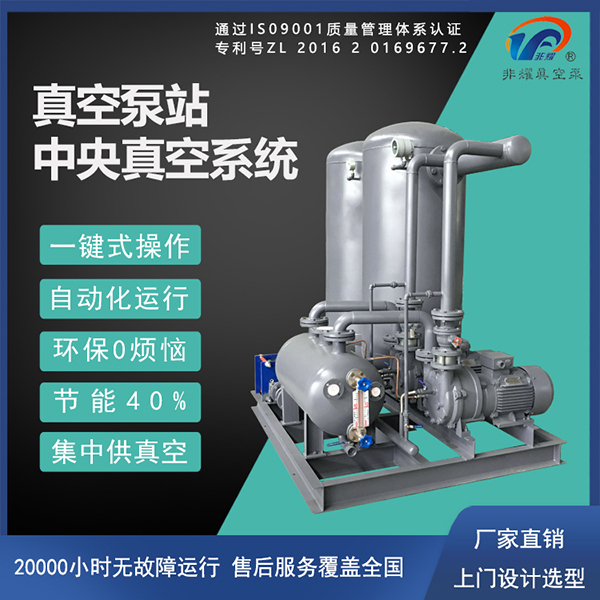 水环真空泵机组电机